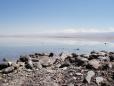 Salar de Atacama. Licancabur ao fundo.