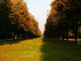 Parque Autumn
